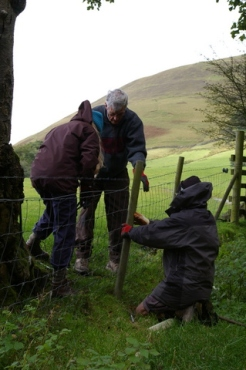 SACV - fence work on the Pennine Way 2012-09-29 ii