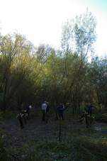 SACV coppicing at Sale Water Park v