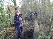 Hedgelaying by the Bowdon Bollin iii