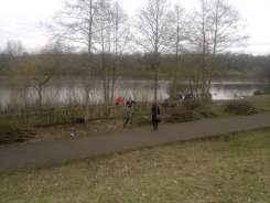 Removing encroaching trees from a reed bed at Chorlton Water Park