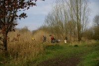 Volunteers at work - pond management