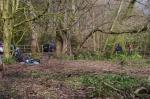 Woodland management at Priory Gardens2
