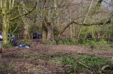 Woodland management at Priory Gardens 2