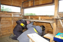 Shelf repairs in bird-hide