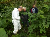 Volunteers preparing to inject Japanese knotweed