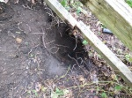 Hole dug for replacement post