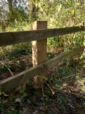 Repaired fencing