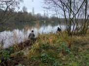 Working on the willow groynes