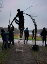 Working on the willow arch