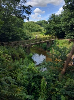 Bridge over the Bollin