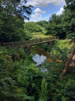 Bridge over the Bollin