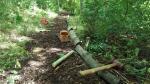 Path maintenance in progress2