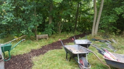 Wheelbarrows on woodland walk