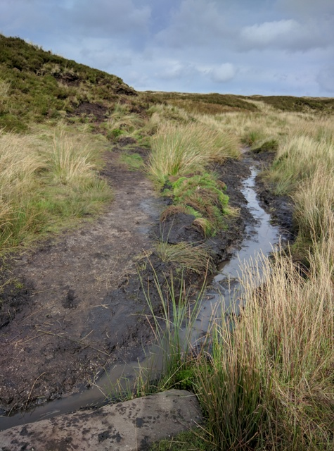 The improved path and drainage