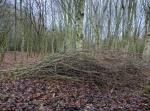 a-habitat-pile