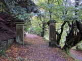 The drive of Errwood Hall