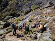 Guided walk near Glendalough
