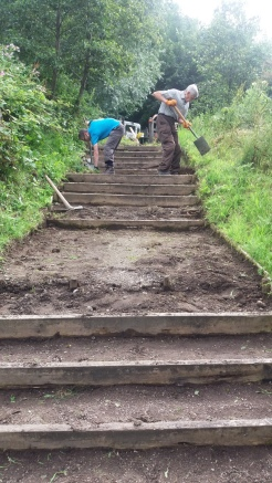 Volunteers working on steps