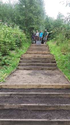 Volunteers and the finished steps