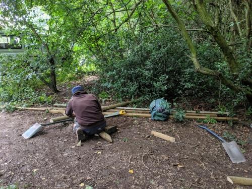 Volunteer sawing