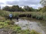 Conservation volunteers in action