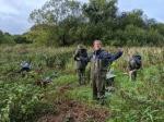 Conservation volunteers preparing